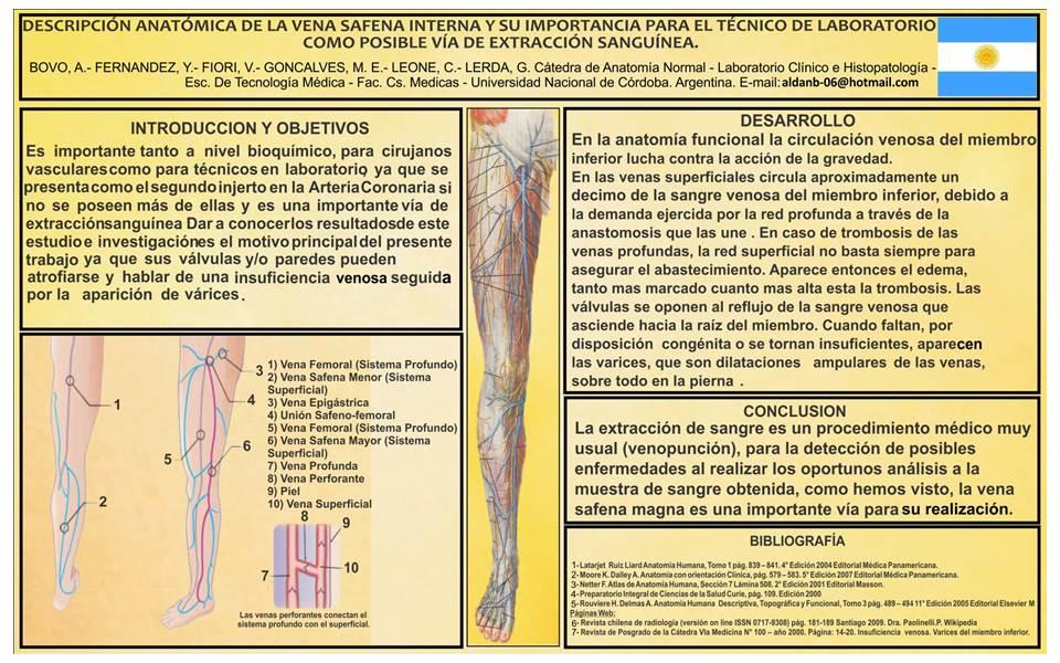 Histologia Virtual » Laboratorio Clínico e Histopatología