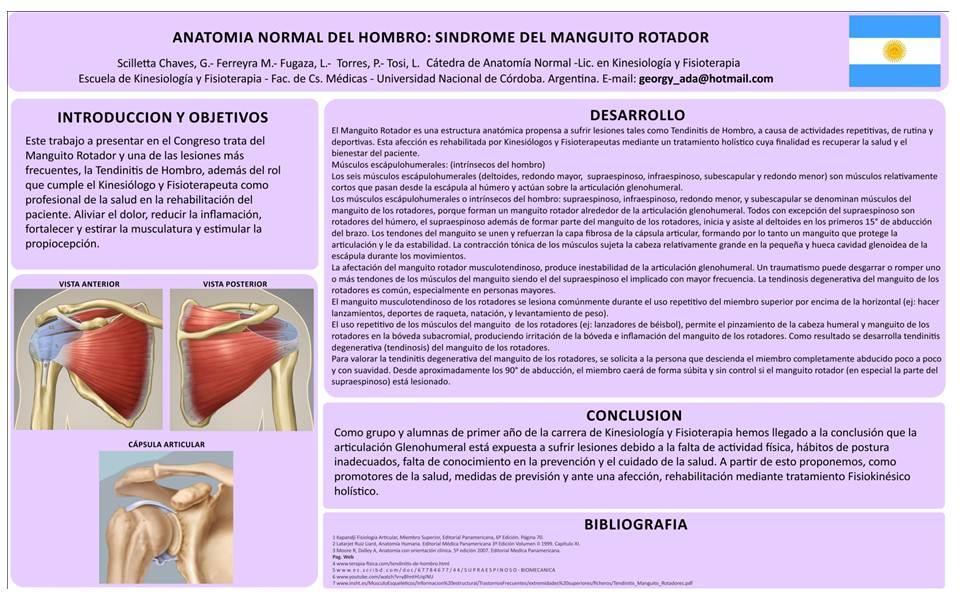 Histologia Virtual » Kinesiología y Fisioterapia